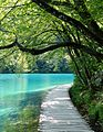 005 - 19.07.16 - Kroatien - Plitvicka Jezera.jpg