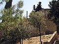 019 Muralles de Sant Eloi.jpg