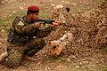 100114-A-IZ725-064 A Peshmerga soldier pulls security on FOB Marez near Mosul, Iraq.JPG