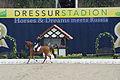 13-04-21-Horses-and-Dreams-Fabienne-Lütkemeier (19 von 30).jpg