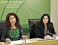 13.02.04-R. Prensa-3-Plan Nacional Drogas (8443683097).jpg