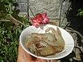 1539Food cuisine of Bulacan 06.jpg