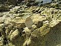 16-05-2017 Balancing Stones on Praia da Balbina (2).JPG