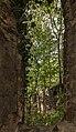 16-09-29-Dorfkirche Alt Lönnewitz-RR2 6661.jpg