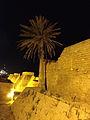 16-7699-101 חומת העיר העתיקה בקיסריה.jpg