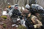 173rd Airborne Brigade climbs higher, participates in Italian mountain training 150325-A-IK450-261.jpg