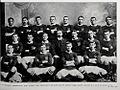 1908 Wellington rugby union team.jpg