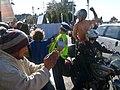 1 free nz photos boobs bikes tauranga protest.jpg