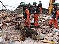 2008년 중앙119구조단 중국 쓰촨성 대지진 국제 출동(四川省 大地震, 사천성 대지진) DSC09473.JPG