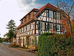 2008 10 19RemshaldenBuochHirsch009
