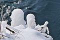 2012-02-12 13-33-27 Switzerland Kanton Schaffhausen Laufen.JPG