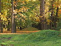 2012-10-03 Гатчина. Липовый сад (1).jpg