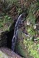 2012-10-27 12-26-57 Pentax JH (49283734061).jpg