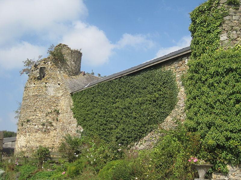 Ruines du château d'Opprebais: tours, donjon, courtines et grange (M# et ensemble formé par ces ruines, l'église, le cimetière et les terrains environnants #S#.