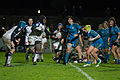 2014 Women's Six Nations Championship - France Italy (163).jpg