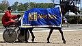 2015 KGB Priset Derbybanan Jagersro harness racing.jpg