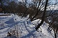 2017 Житомир (222) Замкова гора, край Кафедральної.jpg