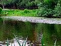 2217. St. Petersburg. Lower Great Suzdal Lake.jpg