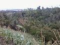2Lt. JP Lanaja Farm - panoramio.jpg