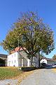 2 Sommerlinden bei der Pfarrkirche von Buchbach 2015-10 NÖ-Naturdenkmal WT-043.jpg