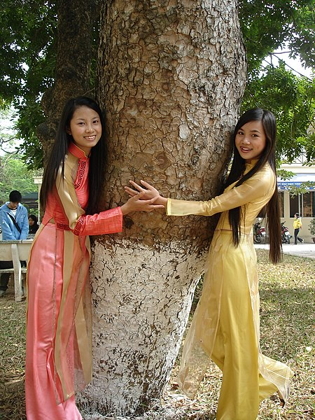 File:2 girls in aodai and a tree.jpg