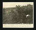 3. -Q. macrocarpa var. depressa. Prairie border. S.W. corner of Lyon county, Iowa, circa 1878-1936 - Flickr - Smithsonian Institution.jpg
