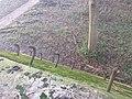 3634 Loenersloot, Netherlands - panoramio (42).jpg