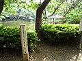 3 Chome-13 Saiwai, Naka-ku, Hamamatsu-shi, Shizuoka-ken 433-8123, Japan - panoramio (4).jpg