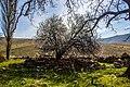 40000 Çayağzı-Kırşehir Merkez-Kırşehir, Turkey - panoramio.jpg
