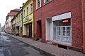 5539viki Kamienna Góra, foto Barbara Maliszewska.jpg