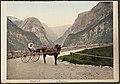 7046. P. Z. Norwegian Carriole (17072745686).jpg
