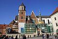 7691vik Wawel. Foto Barbara Maliszewska.jpg