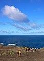 Açores 2010-07-18 (5012135979).jpg