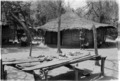 ASC Leiden - Coutinho Collection - 11 19 - Village in the liberated areas, Guinea-Bissau - 1974.tiff