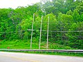 ATC Power Line - panoramio (56).jpg
