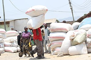 Agriculture in Tanzania - Man carrying bags of rice