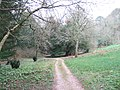 A path in the grounds of Brunel Manor - geograph.org.uk - 1192503.jpg