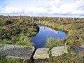 A pool by the Pennine Way - geograph.org.uk - 265124.jpg