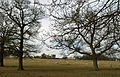 A view towards Grimsthorpe Castle, Lincolnshire, England 02.JPG