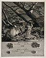 Above, a marten and a weasel on a nocturnal excursion in the Wellcome V0021111.jpg