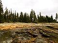 Acadia National Park (8111154630).jpg