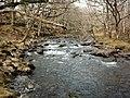 Afon Artro river - panoramio - Keith Ruffles.jpg