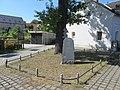 Alberteiche Weißig Sommer (1).jpg