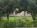 Albluma HOME - panoramio.jpg