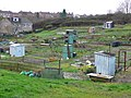 Allotments, Yeovil - geograph.org.uk - 660432.jpg