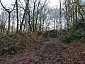 Alum Scar wood - panoramio.jpg