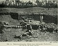 Am Tendaguru - Leben und Wirken einer deutschen Forschungsexpedition zur Ausgrabung vorweltlicher Riesensaurier in Deutsch-Ostafrika (1912) (17977534130).jpg