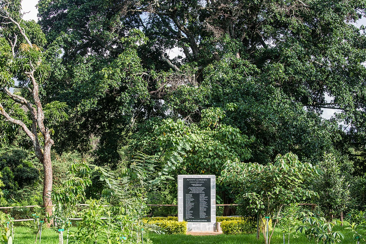 Amani Garden, Karura Forest, Nairobi.jpg