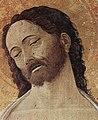 Andrea Mantegna 039 (37759796495).jpg