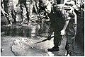 Angelo del fango con gli alamari, fotografato a novembre del 1966.jpg